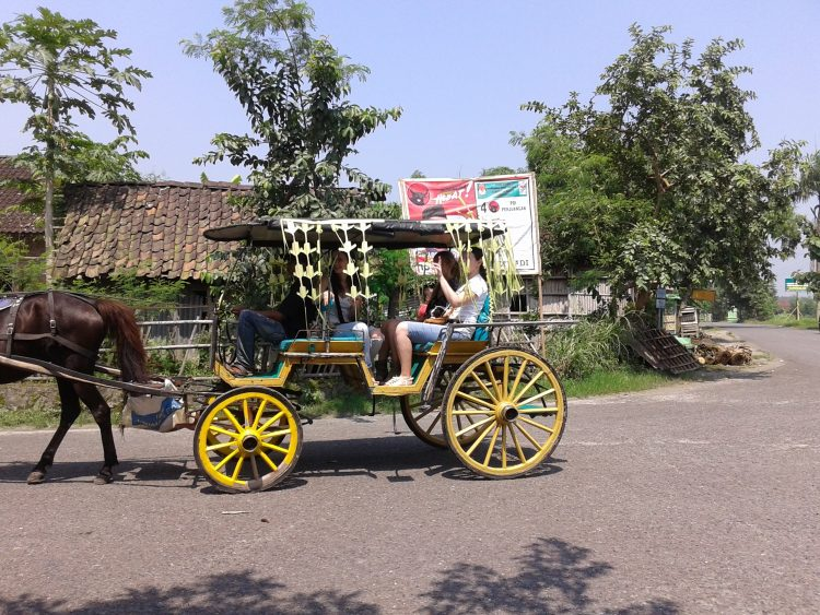 riding horse cart to discover Jogjakarta city